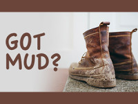How To Remove Mud Stains On Exterior Stone